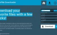 YourFile Downloader: Screenshot